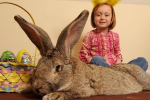 girl with huge easter bunny